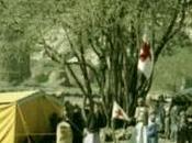 Yemen 1964 épopée CICR