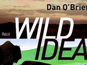 Wild Idea, formidable récit d'aventures Brien