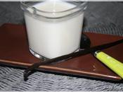 Yaourt aromatise maison