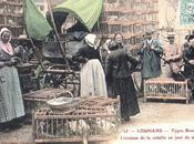 1906 Marché Volailles LOUHANS
