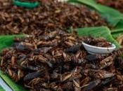ENTOMOPHAGIE: insectes sont-ils plus sains viande sous sur-alimentation? Clin Nutr