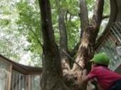Entreprise cherche verser taxe d'apprentissage formation agro-écologie permaculture!