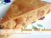 Gâteau tout abricot, sans gluten, lait