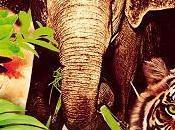 Enfant jungle Michael Morpurgo