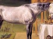 chevaux Louis Bavière (2): Cosa rara, cheval préféré