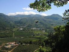 plages d'exception découvrir Costa Rica