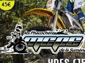 Rando Phacochères MCPS septembre 2016 Ydes (19)