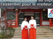 sanctuaires shintoïstes japon l'essentiel pour visiteur