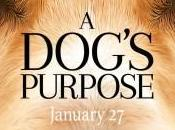 [Trailer] Dog's Purpose chien