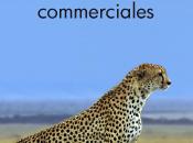 Connecteur Aircall