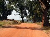 Quelles sont étapes indispensables lors d'un voyage Burkina Faso
