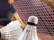 Badminton règles expliquées