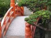 Pour jardin Zen, adoptez Chaîne Pluie*