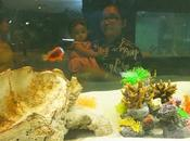 juin 2017 Mélanie l'aquarium Nong Khai