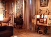 L'incroyable musée chasse nature