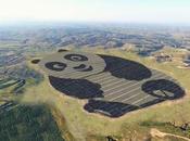 Datong Panda Chine