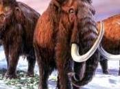 mammouths pub' souffrent. géants mondiale accumulent mauvaises nouvelles.