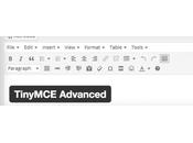 Comment personnaliser l'éditeur contenu WordPress