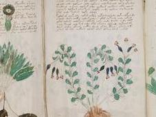 A-t-on trouvé pour déchiffrer manuscrit Voynich