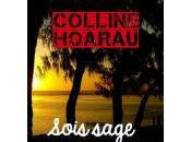 Disponible Sois sage, Reine-May l'auteure Colline Hoarau