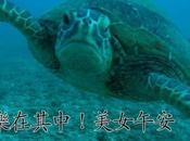 Taiwanais filmé paradis