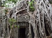 promenade dans Angkor