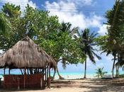 Voyage: semaine Mexique