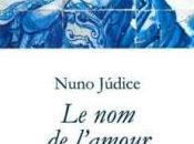 Nuno Júdice Semiología