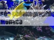 musée océanographique Monaco
