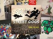 Street Dogs Chiens Claude Degoutte