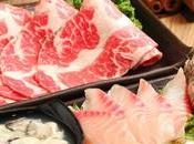 Comment bien choisir marque couteau japonais