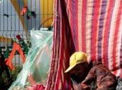 Hidalgo Sangatte parisien chronique d'un désastre annoncé