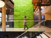 sublimes bureaux style industriel végétalisés Vancouver