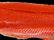 Mille-feuilles saumon tomate confite encre seiche