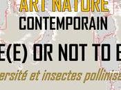 be(e) SALON NATURE CONTEMPORAIN PRADES-LE-LEZ