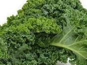 Gratin chou kale tomate viande hachée