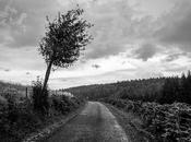 routes cévenoles noir blanc