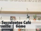 Succulentes café Marseille 6ème