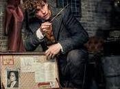Fantastic Beasts: Crimes Grindelwald (Ciné)