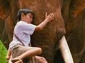 cagnotte http://www.ganeshapark.com/
