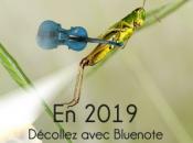 2019, décollez avec Blue note systems