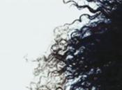 Roman Pôv'Cheveux Lynda Chouiten