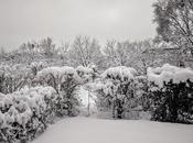 Alors neige vint Extrait d'un conte d'Oscar Wilde.