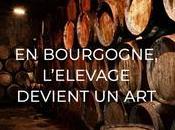 Soirée dégustation Whiskies Michel Couvreur Jeudi novembre 2018