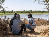 Changement climatique conflits armés cocktail explosif Sahel