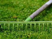 Comment utiliser broyeur végétaux? Tout savoir