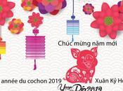 Bonne année cochon 2019 Chúc mừng Xuân