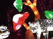 Lumières sauvages Thoiry sortie féerique