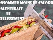 Consommer moins calories peut-il ralentir vieillissement?