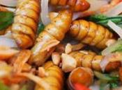 Manger insectes comestibles bientôt notre quotidien